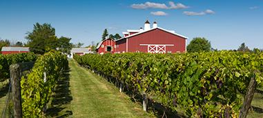 Thousand Islands Winery, NY.