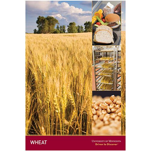 Wheat poster.