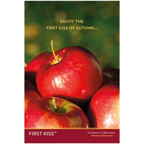 First Kiss/Rave apple poster.