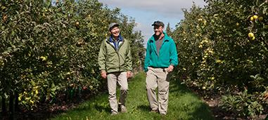 Jim Luby and David Bedford in orchard.
