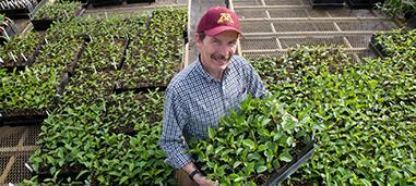 David Bedford in greenhouse.