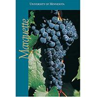 Marquette grape poster.