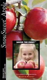 SnowSweet Brochure Cover.