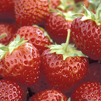 Mesabi Strawberry