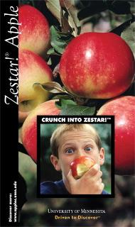 Zestar brochure cover.